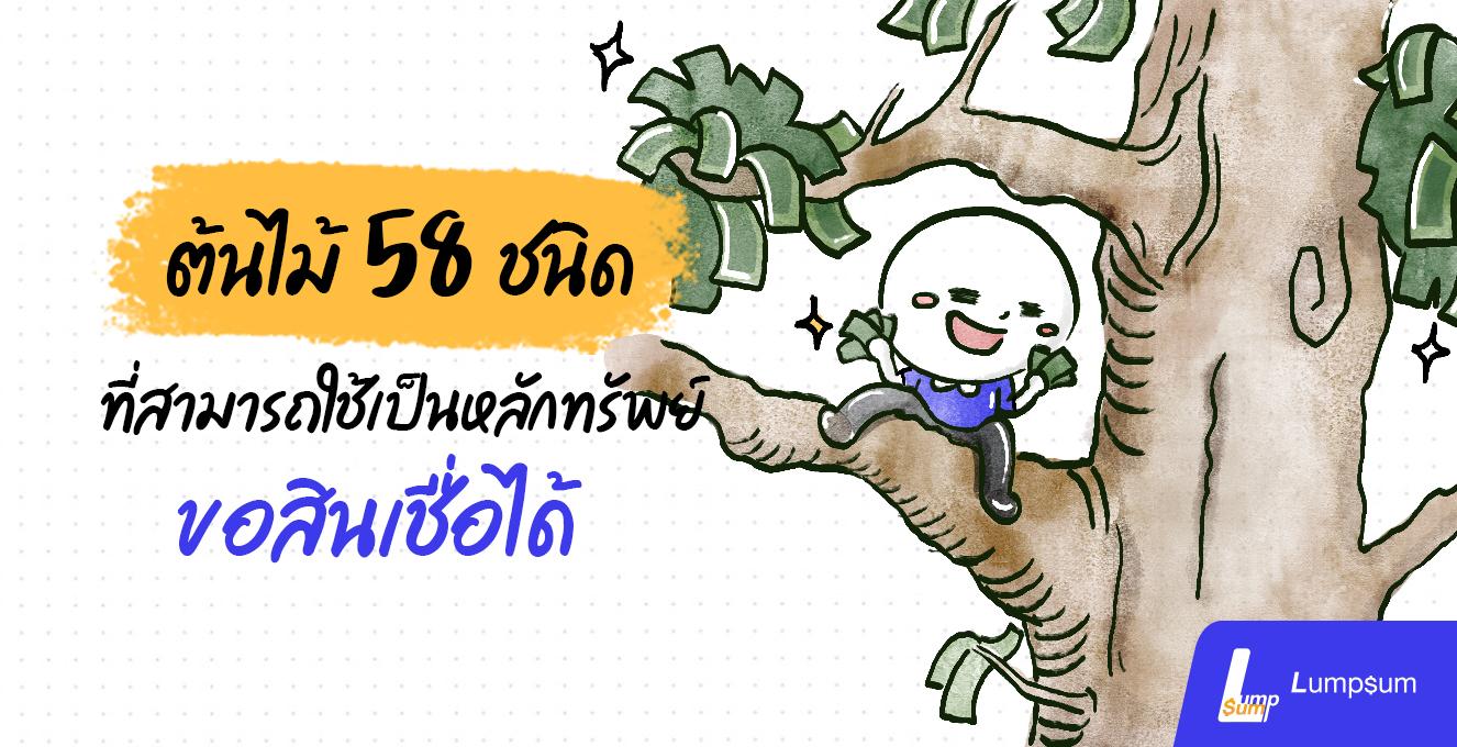 ต้นไม้ 58 ชนิด ที่สามารถใช้เป็นหลักทรัพย์ขอสินเชื่อได้